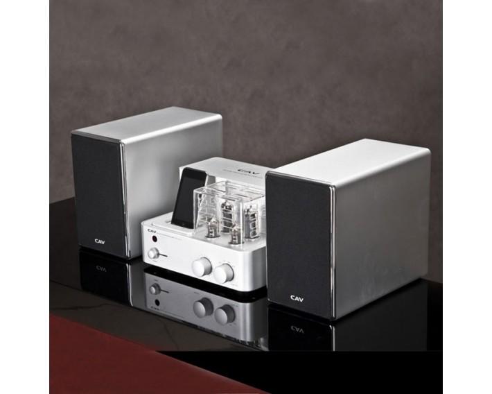 Ensemble CAV : dock Ipod/ampli tubes + paire HP